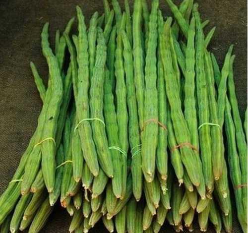 A Grade Drumsticks Vegetables