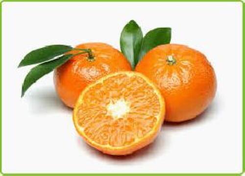 Orange A Grade Fresh Kinnow Fruits