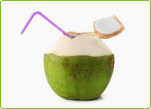 Fresh Green Coconut For Health Cultivation Type: Organic