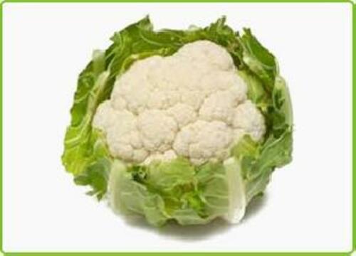 Green Fresh Cauliflower for Cooking