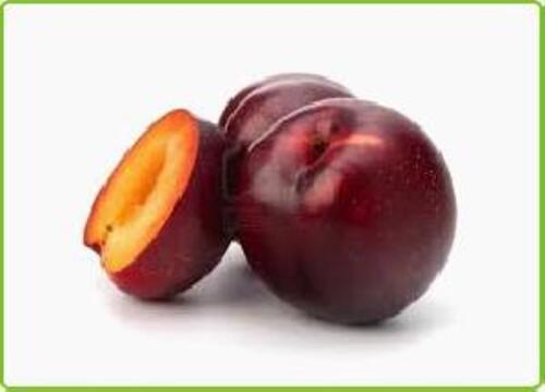 Purple Fresh Plum Fruits