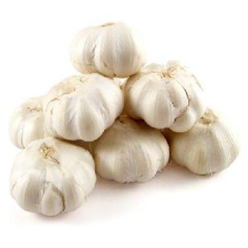 Fresh White Natural Garlic