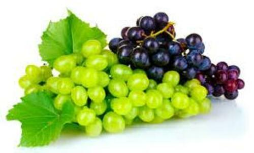 Green & Black Fresh Grapes