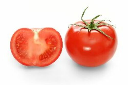 Fresh Red Tomato for Cooking