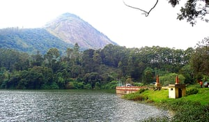 Munnar 2 Night 3 Day Tour Package Service
