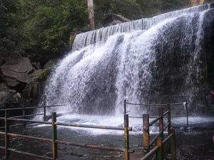 South Theni One Day Trip Package Service