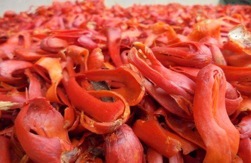 Natural Mace Spices Siau