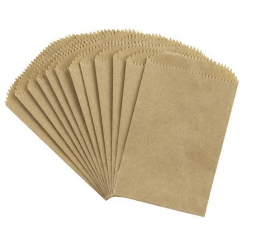 Plain Brown Paper Envelope