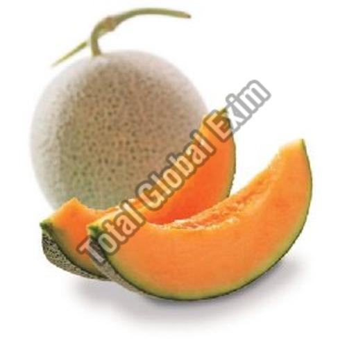 A Grade Fresh Muskmelon Fruits