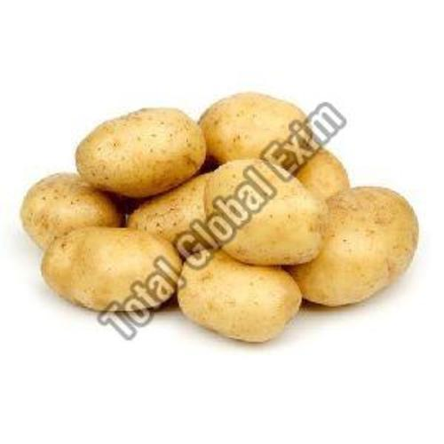 Natural Fresh Potato For Cooking