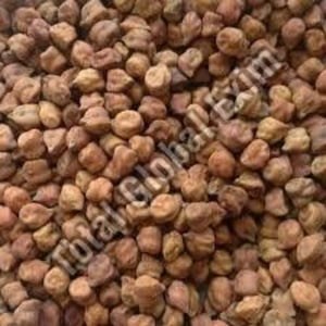 Pure Brown Chickpeas for Cooking