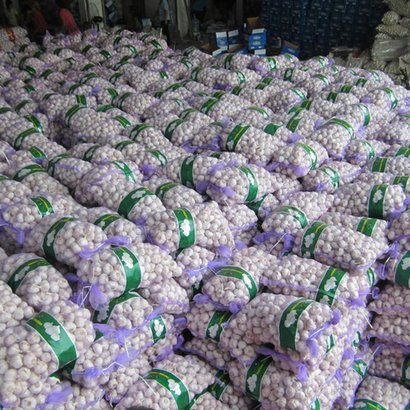 Pure White Garlic With 100% Maturity Certifications: Ios