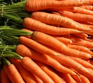 Nutritious Fresh Red Carrots
