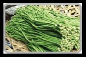Fresh Snake Beans for Cooking