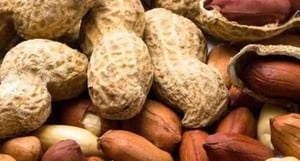 High Nutrition Ground Nuts