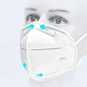 N 95 Personal Safety Face Mask