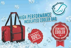 Portable Insulated Cooler Bag