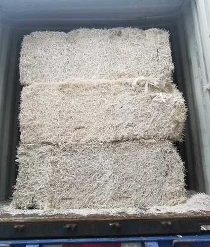 Virgin Softwood Pulp