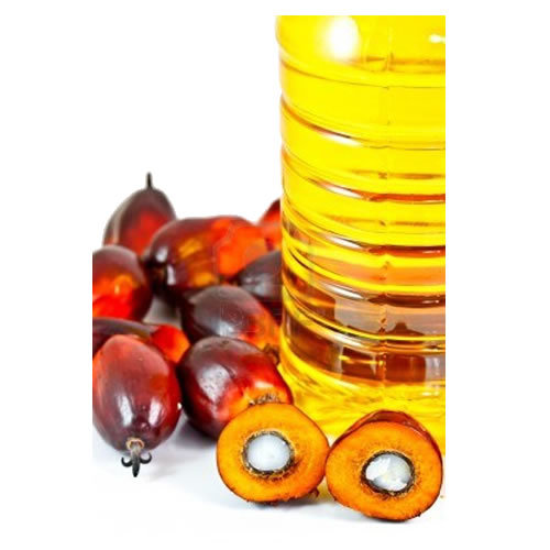 Packed Refined Palm Oil