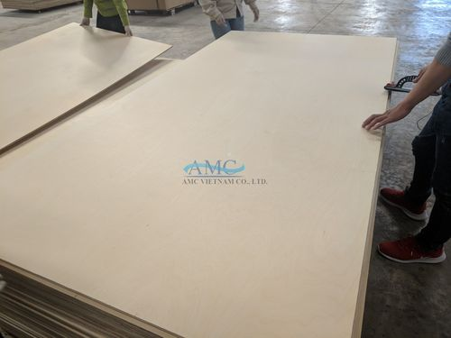 Vietnam Birch Commercial Plywood