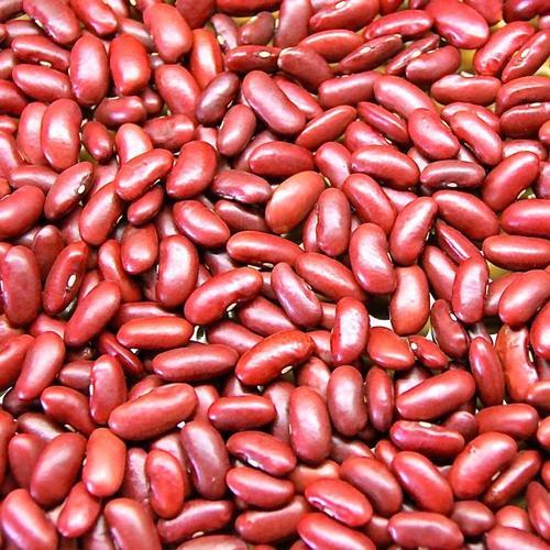 High In Fiber Kidney Beans