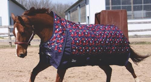 Comfortable Rain Coats For Horses