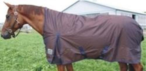 Fine Finish Winter Blanket For Horses