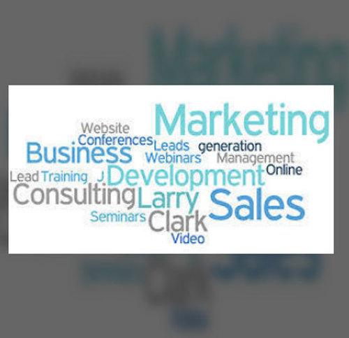 Business Development Services