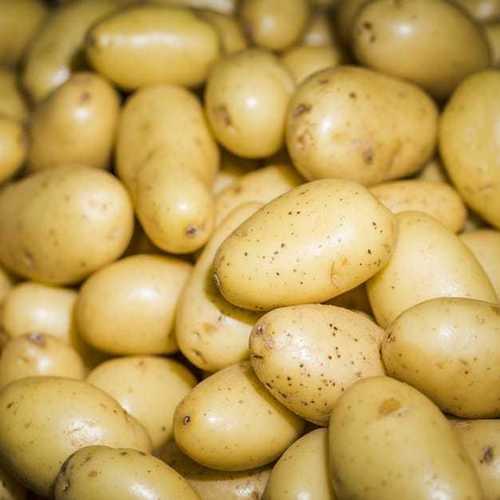Complete Purity Fresh Potato