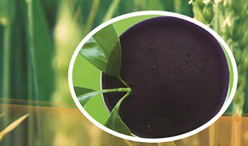 Potassium Humate Powder Application: Agriculture