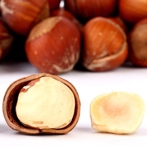 A Grade Natural Hazelnuts