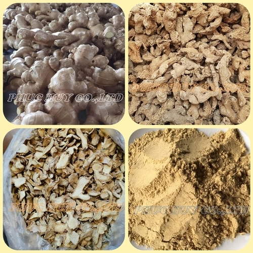 Fresh And Dried Ginger
