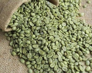 Top Grade Quality Robusta Coffee and Arabica Green Coffee Beans