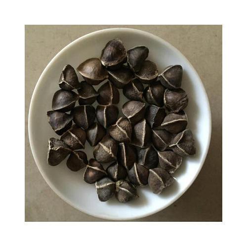 High Grade Moringa Seed