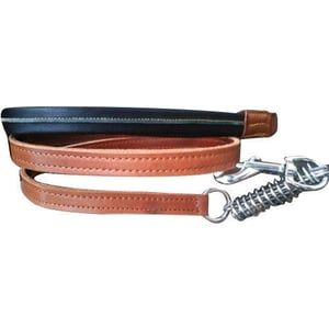 Light Weight Leather Leash