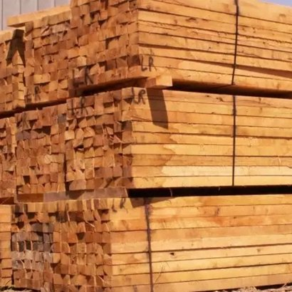 Termite Resistance Timber Wood Grade: A