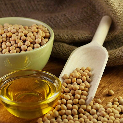 Crude and Refined Soybeans Oil