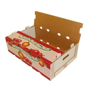 Fruits Corrugated Packaging Box