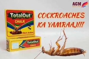 Total Out Cockroach Chalk