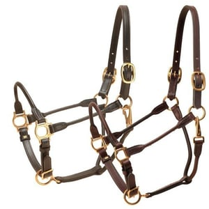 Leather Halter With Stainless Steel Buckles