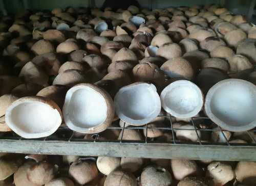Natural Dried Coconut Copra