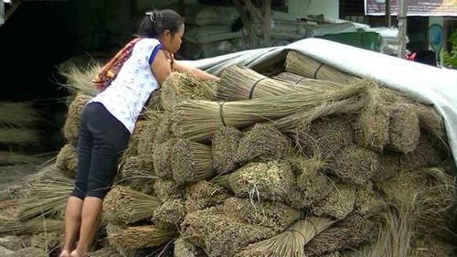 Long Lasting Broom Stick