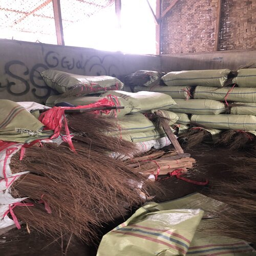 Palm Ekel Brooms Stick