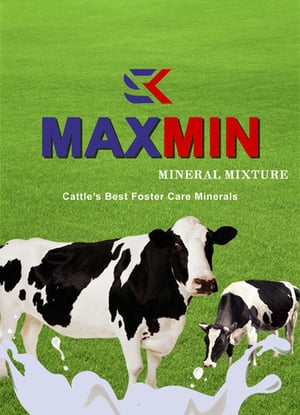 MaxMin Mineral Mixture for Cattles