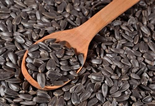 Premium Grade Sunflower Seeds
