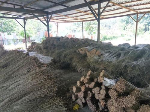 Palm Ekel Broom Stick