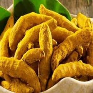 Healthy and Natural Dry Turmeric Finger