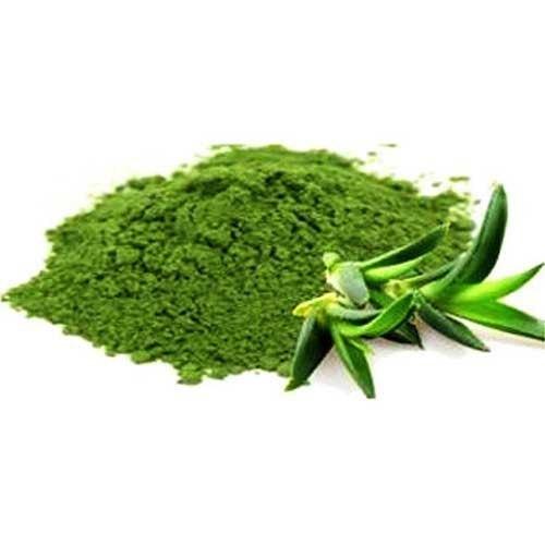 Aloe Vera Extract (Aloe Barbadensis Extract)