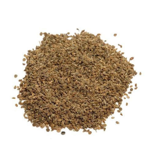 Celery Seed Extract (Apium Graveolens Extract)