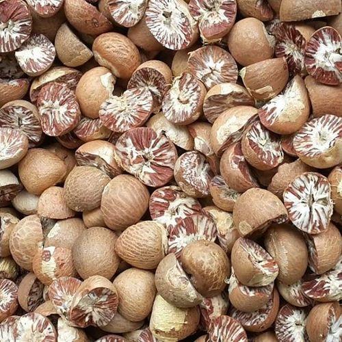 Natural Brown Betel Nut
